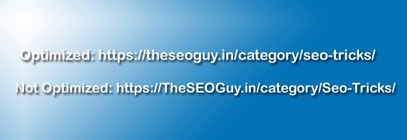 seo friendly url lowercase and upper case example